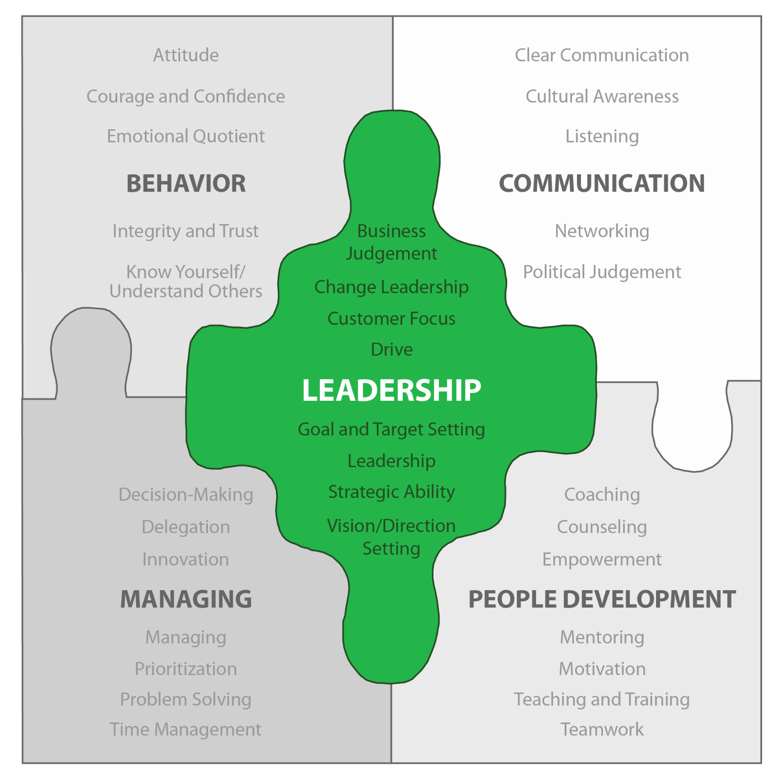 NBOGroup Leadership Competency Map
